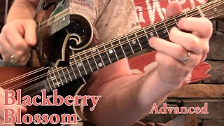 Blackberry Blossom For Mandolin- Intermediate & Advanced!