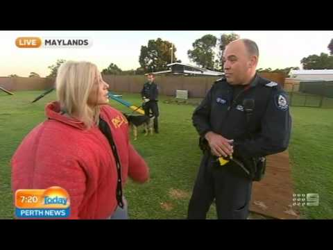 WA Police Dog Squad Part 1 | Today Perth News