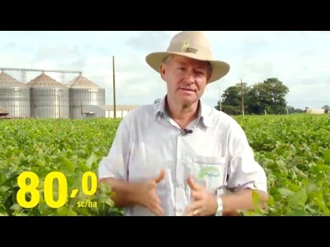 Nidera - Depoimento  Agricultor Harri Pscheidt