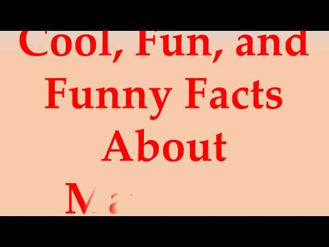 Cool, Fun, and Funny Facts About Mauritius