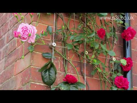 DIY Wire Rope Trellis Video Installation Guide