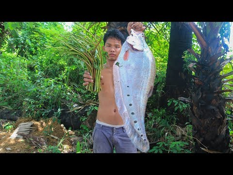 Primitive Technology: Cooking Big Fish Sour Soup For Free Energy Food | Wilderness Food