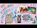 ✨ New Cute 2018 Calendars! Pusheen, Frozen & Animal ✨