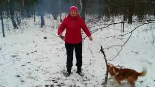 Светлана С., Воронеж | Конкурс новогодних видеопоздравлений