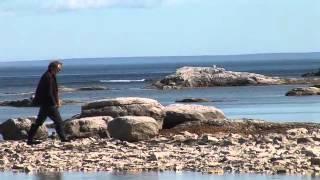 Basse Cote Nord demo James Gray Numada 2.mov