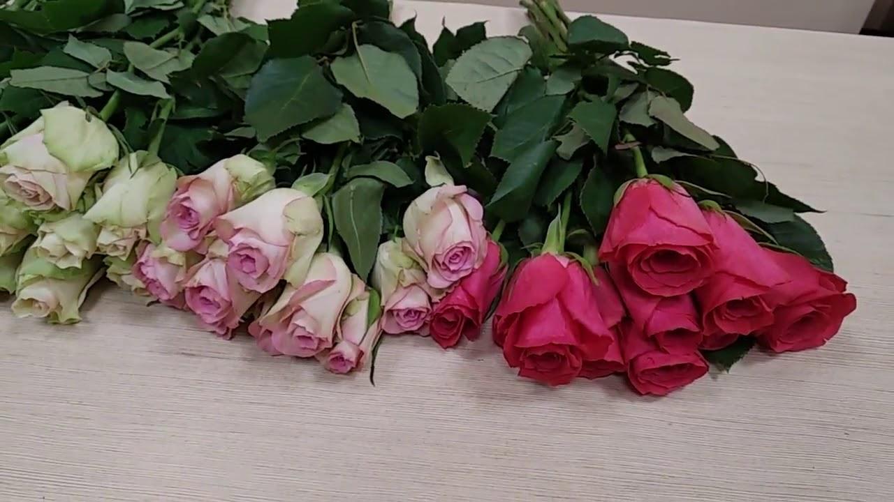 Магазин цветов, букет из 23 роз мастер класс