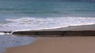 Video Vax - Bruit des vagues sur la plage de Collignon à Tourlaville - Cherbourg (Cotentin)