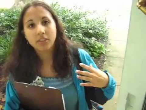 Vassar Student Canvasses for Clean Energy Bill