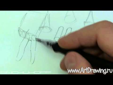 видео: кисти рук