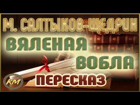 Запутанное дело Салтыкова-Щедрина. Авторская программа Игоря Золотусского. Фильм 2-й