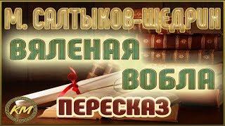 видео Анализ сказки Салтыкова-Щедрина Карась-идеалист