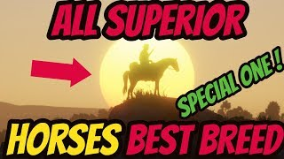 Red Dead Redemption 2 All Superior Horses ! BEST BREED IN THE GAME