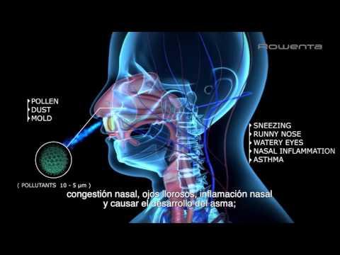 Purificador Intense Pure Air de Rowenta | Efecto de los contaminantes en nuestro organismo