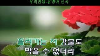 우리인생-유명화 (경음악