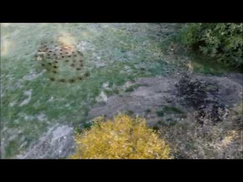 Ufo landing video: Drone footage showing UFO imprints on the ground
