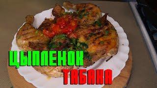 Цыпленок табака, рецепт простой и вкусный. Приготовление цыпленка тапака своими руками. Chicken