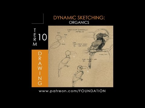 Foundation Patreon - Term 10 Preview - Dynamic Sketching Organics