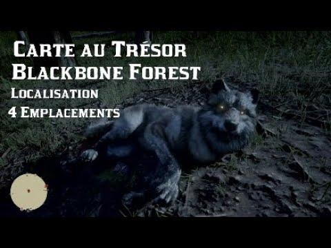 Carte Au Tresor New Bone.Red Dead Online 2 Carte Au Tresor Blackbone Forest Localisation 4 Emplacements