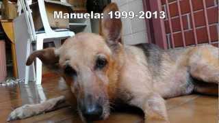 Eutanásia: o último dia da Manu