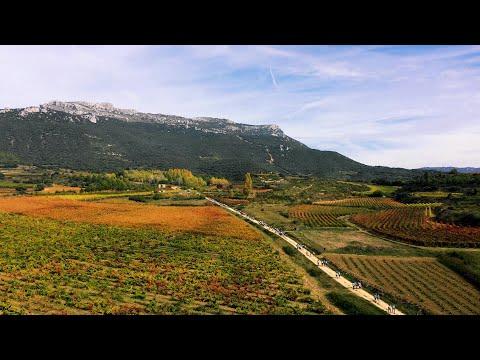 Rioja Alavesa Wine