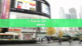 Kabuki-cho (歌舞伎町)