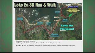 Malama Loko Ea Foundation: 8k Run and Walk