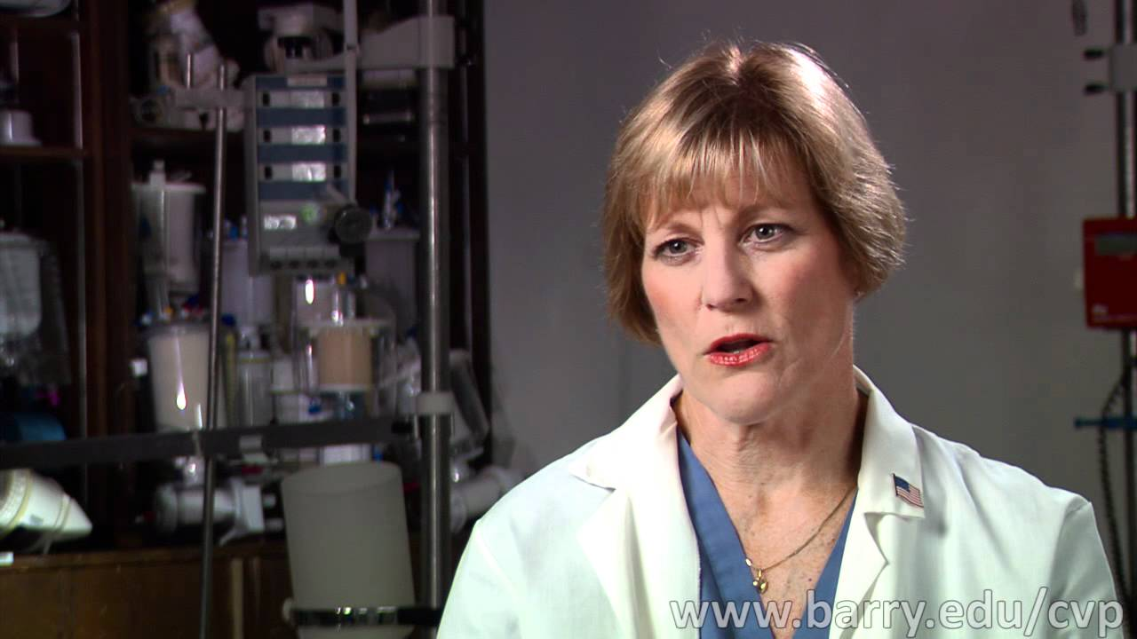 Is Cardiovascular Perfusion The Right Career For You Youtube