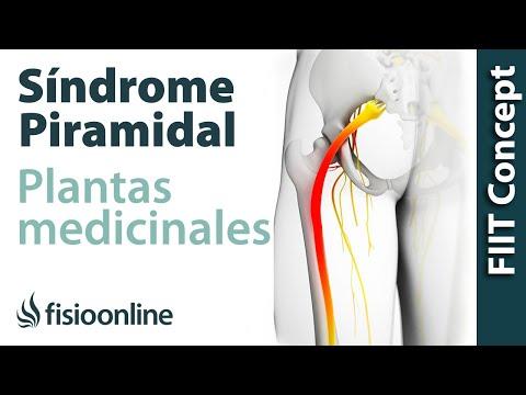 dolor intermitente de próstata derecha