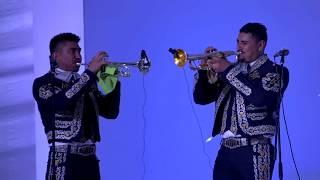 mariachi sol de mexico discografia descargar gratis