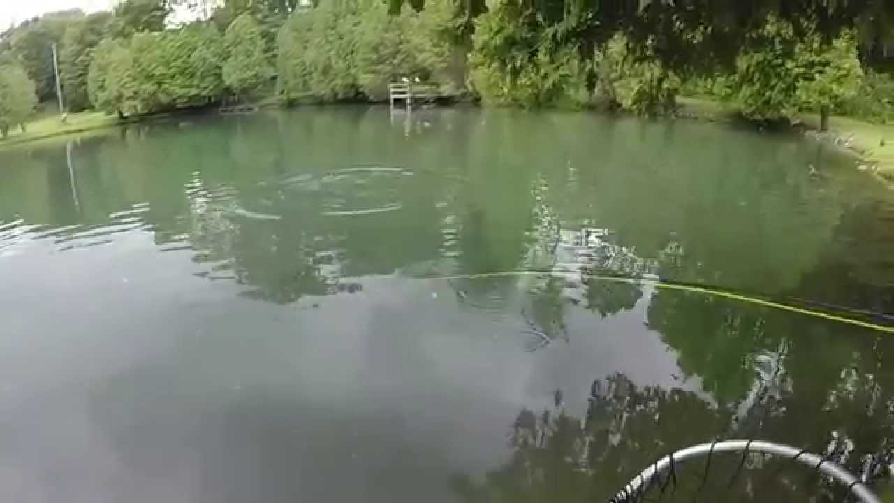 Fishing for big rainbow trout in small ponds youtube for Small pond fishing