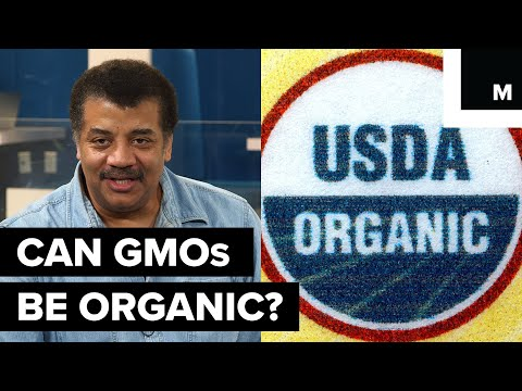 Can GMOs be organic?