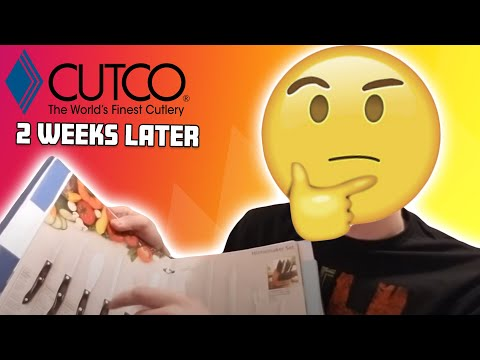 So I Joined Vector/Cutco... 2 Weeks Later My Thoughts