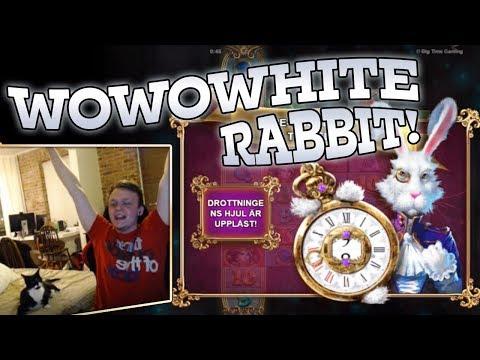 HUGE Bonus Buy on White Rabbit!!