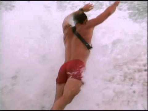 Baywatch S01E01 Panic At Malibu Pier DVDRip XviD