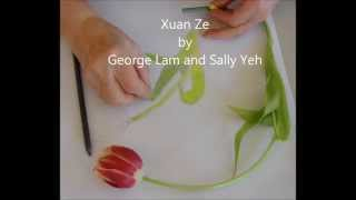 Xuan Ze (选择) by George Lam (林子祥) and Sally Yeh (叶倩文) (Instrumental)