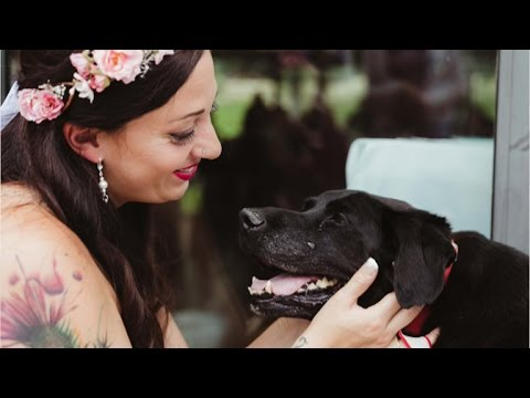 Dying dog lives just long enough to see his person married