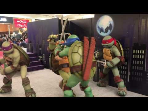 Ninja Turtle Live on Stage