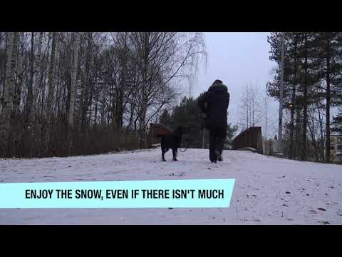 Snow shows up in southern Finland.