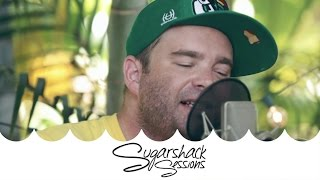 the movement   habit live acoustic sugarshack sessions