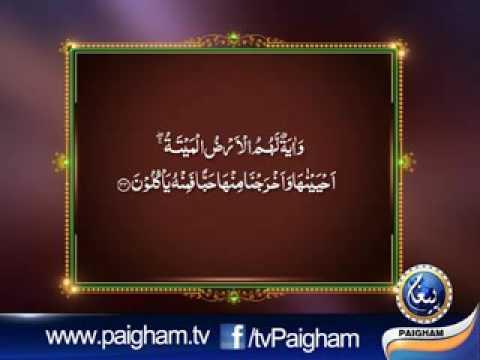 Dora e Quran para 23-A