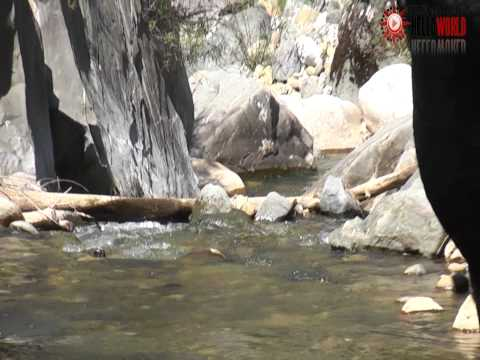The River of Murra Albania.wmv