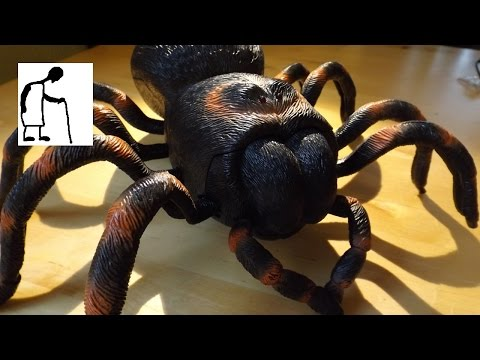 Charity Shop Gold or Garbage Infrared Spider Part #1