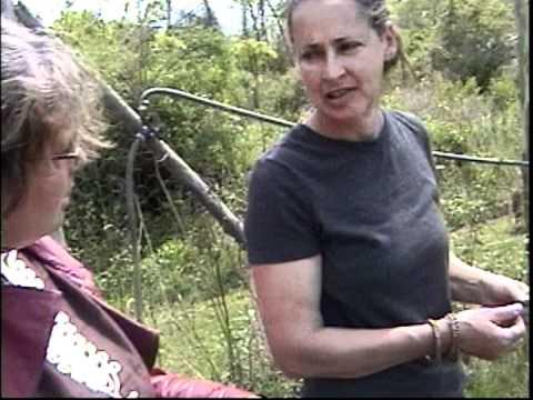 Lisa Alt, (Kingston NY) CSA organic farm, Frank Craven & Michele Danels WA/HA? Occupy!