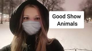 Horse Riding On Stallion In City / Dodo / Vlog