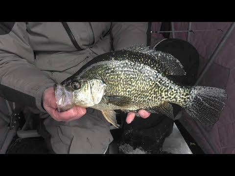 Ice Fishing Enormous PANFISH - Nebraska Sandhills Shallow Water Panfish - Jason Mitchell Outdoors