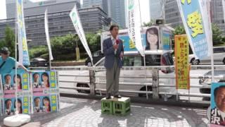 「小沢一郎議員を支援する会」の代表世話人である伊東章弁護士の応援演...