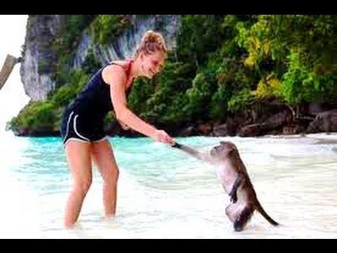 Pattaya Monkey Island trip - YouTube