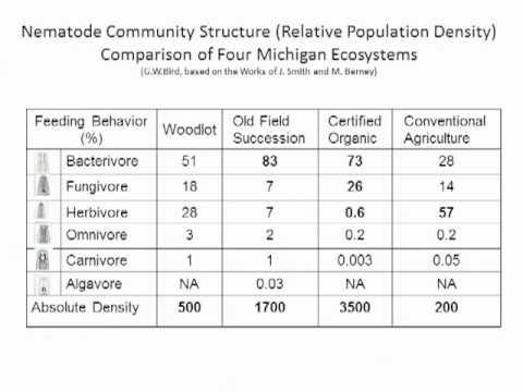 Biology of Organic Orchard Soils