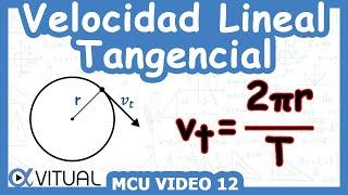 Velocidad lineal (tangencial) ejemplo 1 de 5 | Física - Vitual