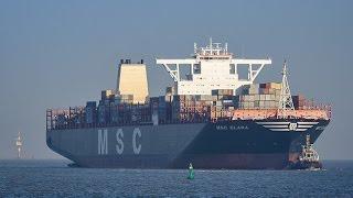Containerschiff MSC CLARA, JadeWeserPort (Jungfernfahrt)